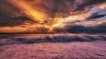 Розовая волна