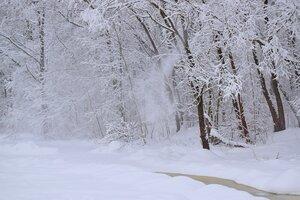 Снежный январь.